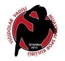 Sultanbeyli Yiğidolar Vadisi Spor Kulübü
