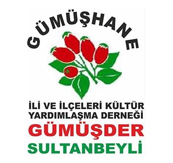 Sultanbeyli Gümüşhaneliler Derneği - GÜMÜŞDER