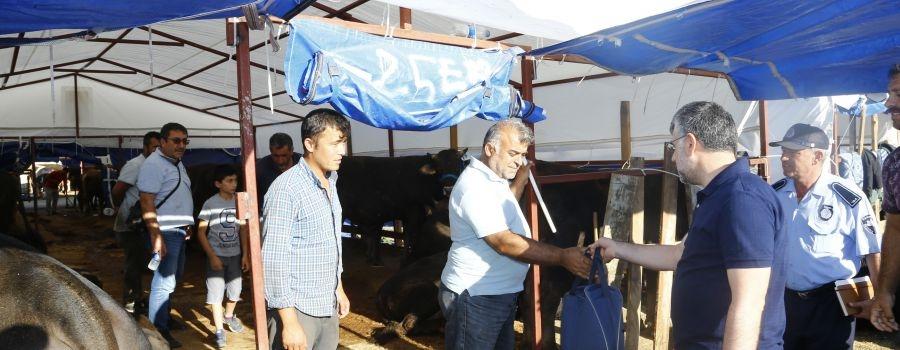 Sultanbeyli Kurban Pazarı 27 Temmuz'da Açılacak