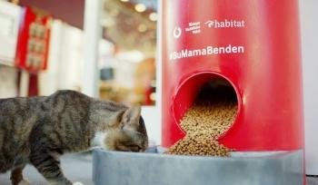 Bu Makineler Tweet ile Hayvanlara Mama Veriyor