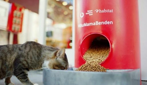 https://www.sultanbeylim.com/haberler/bu-makineler-tweet-ile-hayvanlara-mama-veriyor